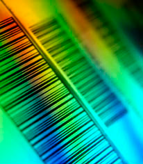 Scanfiles bar code system